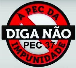 pec37impunidae