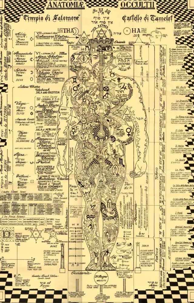 anatomia oculta rosa II