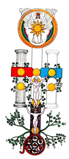 arvore ilustrada