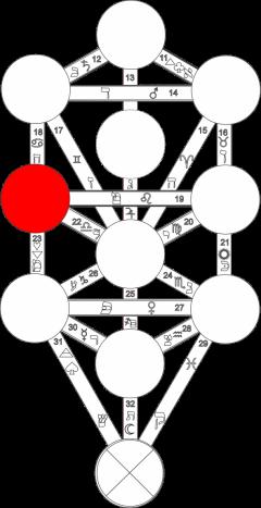 Corel caminho 5