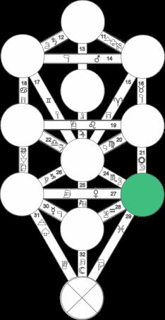 Corel caminho 7