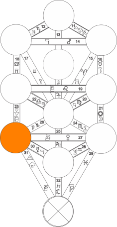Corel caminho 8