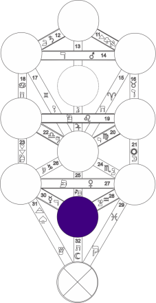 Corel caminho 9