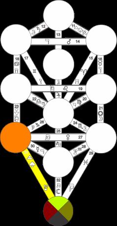 Corel caminho 31